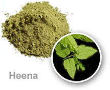 heena-powder-and-Mehndi-Plant